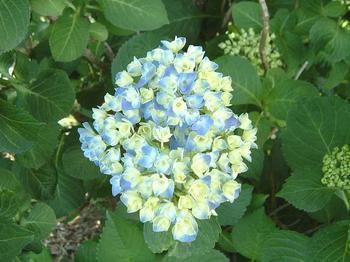 2004_053b.jpg